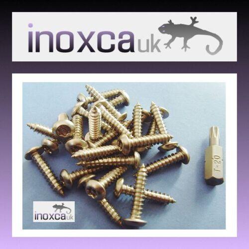 T20 Bit 25 @ 4 x 50 mm Acciaio Inox Pulsante Torx Testa Vite Di Legno Pin di sicurezza
