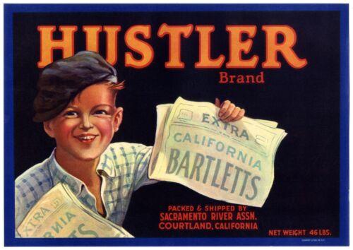 HUSTLER~NEWSPAPER BOY~ORIGINAL 1920s COURTLAND CALIFORNIA PEAR FRUIT CRATE LABEL