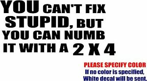 """Vinyl Decal Sticker - You Can't Fix Stupid but Numb with 2x4 Car Truck Fun 7"""""""