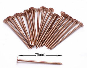 Great Image Is Loading Solid Copper Roofing Nails Tree Stump Killer 50