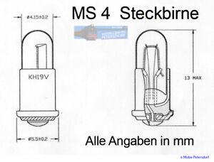 Lampes-de-Rechange-MS4-19V-10-X-Neuf
