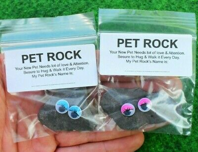Pet Rock Great Novelty Present Gift For Boy Girl Him Her Emoji Face Birthday Uk Ebay