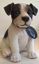Pet Pals Jack Russell Puppy by Vivid Arts
