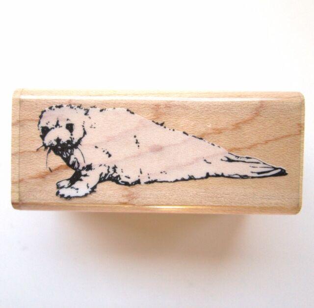 Realistic Baby Harp Seal Rubber Stamp 058-C Saddleback Pup Ocean Animal Arctic