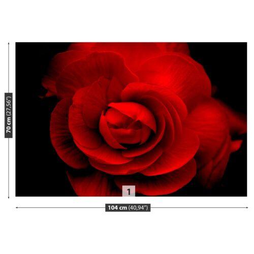 Vlies-Fototapete Fototapeten Tapete aus Vlies Poster Foto Rose Rot