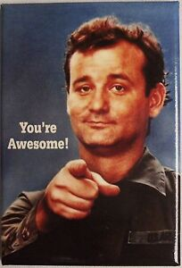 You Are Awesome! A Funny Refrigerator Magnet......