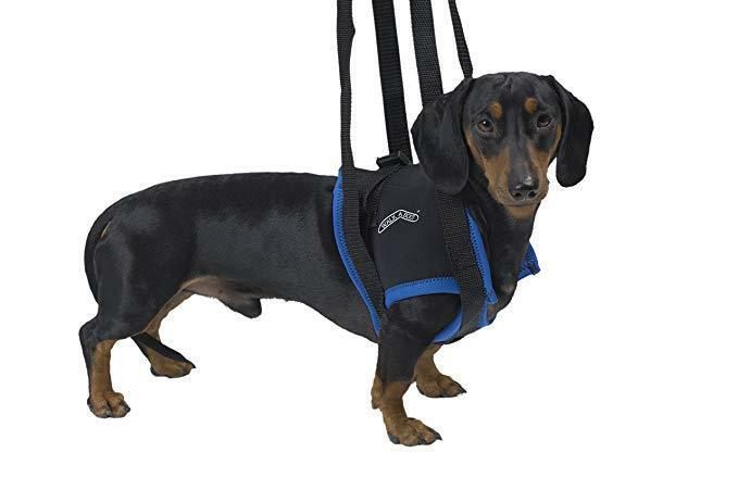 Kruuse Walkabout Front Legs Harness, Small, Premium Service, Fast Dispatch