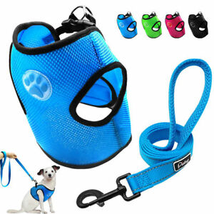 Soft-Mesh-Dog-Harness-and-Leads-Leash-Paw-Print-for-Small-Dogs-Puppy-Chihuahua