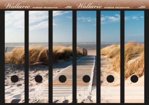 Holzweg zum Strand Wallario Ordnerrücken selbstklebend für 6 breite Ordner
