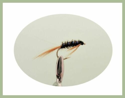 Size 10//12 12 Pack 4 Colours For Fly Fishing Diawl Bach Nymph Trout Flies