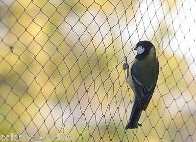 Bird Di Compensazione Giardino Stagno Frutta 4m 8m 6m Anti Netto Protezione Verdure Gabbia 12m 14m 20m- Con Una Reputazione Da Lungo Tempo