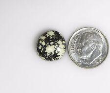 Natural Damele Nevada Turquoise Premium cabochon gemstone cab gem stone d019