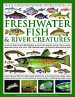 The Illustrated World Encyclopedia of Freshwater Fish and River Creatures: A Natural History and Identification Guide to the Aquatic Animal Life of Ponds, Lakes and Rivers, with Over 1000 Detailed Colour Illustrations and Photographs by Daniel Gilpin (Hardback, 2009)