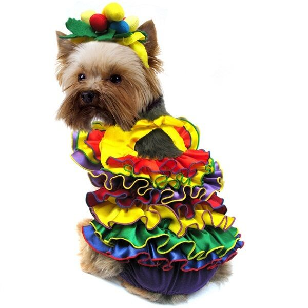 High Quality Dog Costume - CALYPSO QUEEN COSTUMES Coloreful Carnival Dress Dogs