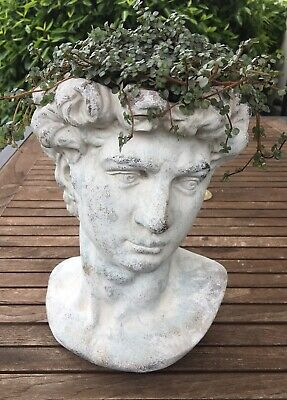 VALO Männerkopf Pflanzschale Büste Mann Gartendeko Garten Schale Pflanzgefäß gr.