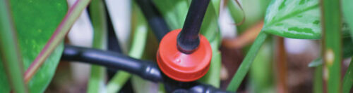 16mm Schwarz Ldpe Wasser Rohr Schlauch Garten Bewässerung für Tropfen 13mm Id