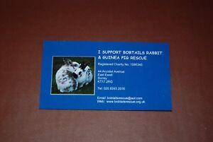 Bobtails-Rabbit-Bunny-Fridge-Magnet-100-Charity