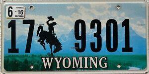 GENUINE-American-Wyoming-Cowboy-Horse-License-Licence-Number-Plate-17-9301