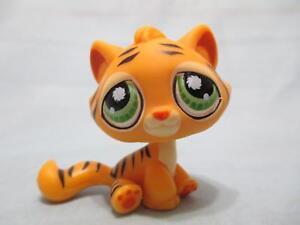Littlest Pet Shop Cat Sitting Kitten 1521 Authentic Lps Exclusive