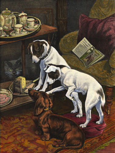 SMOOTH FOX TERRIER /& DACHSHUND WATCHING CAKE CHARMING DOG GREETINGS NOTE CARD