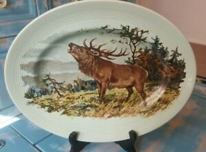 Beautiful-Vintage-Liverpool-Pottery-Large-Light-Green-Oval-Plate-Wood-Deer-Stag