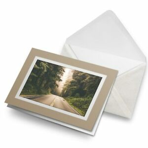 Greetings-Card-Biege-Beautiful-Forest-Road-Car-Driving-Path-8340