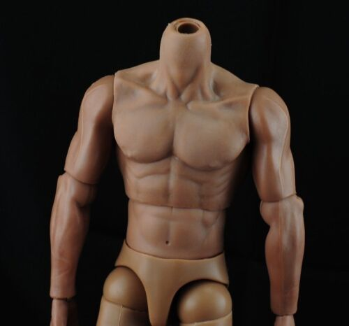 Hot Custom Muscular 1//6 Toys Scale nude Body TTM19 Hit figure Narrow Shoulder