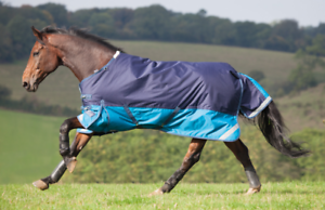Shires Winter Highlander Turnout Rug 2014 - Navy Turquoise