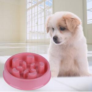 Dog Food Dish To Slow Eating