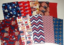 Easy Quilt Kit/10 Fats and 2 Yards of Background/Patriotic/Americana!****