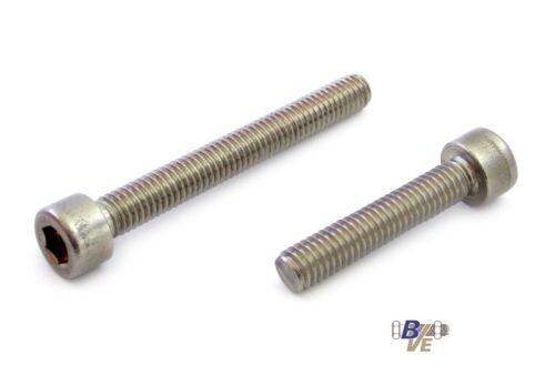 100 Innensechskantschrauben Zylinderkopf DIN 912 A2 V2A M 6x25