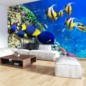 44151192 Stunning underwater coral reef fish turtle wallpaper wall mural