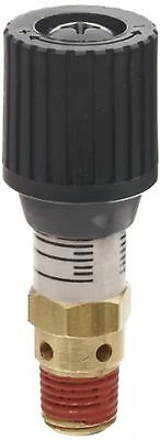 Control Devices CR Series Brass Pressure Relief Valve, 0-100 psi Adjustable