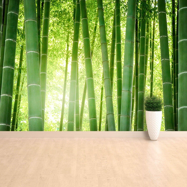 Fototapete Selbstklebend Einfach ablösbar Mehrfach klebbar Bambuswald