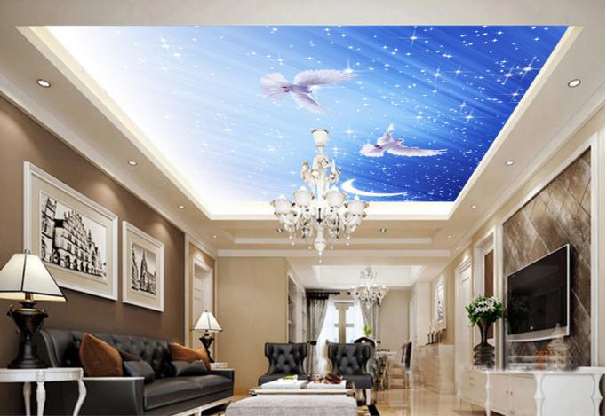 3D Dove Moon View 57 Ceiling WallPaper Murals Wall Print Decal AJ WALLPAPER US
