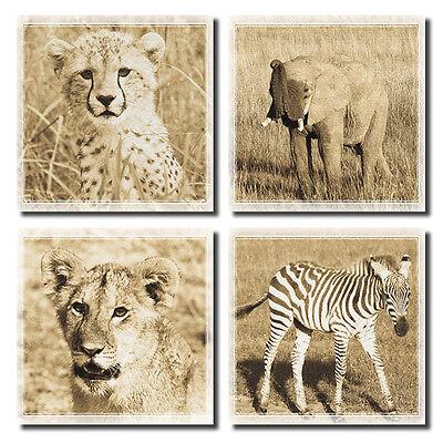 "4 Baby African Safari Animal Sepia Art Posters; Four 12x12/"" Prints"