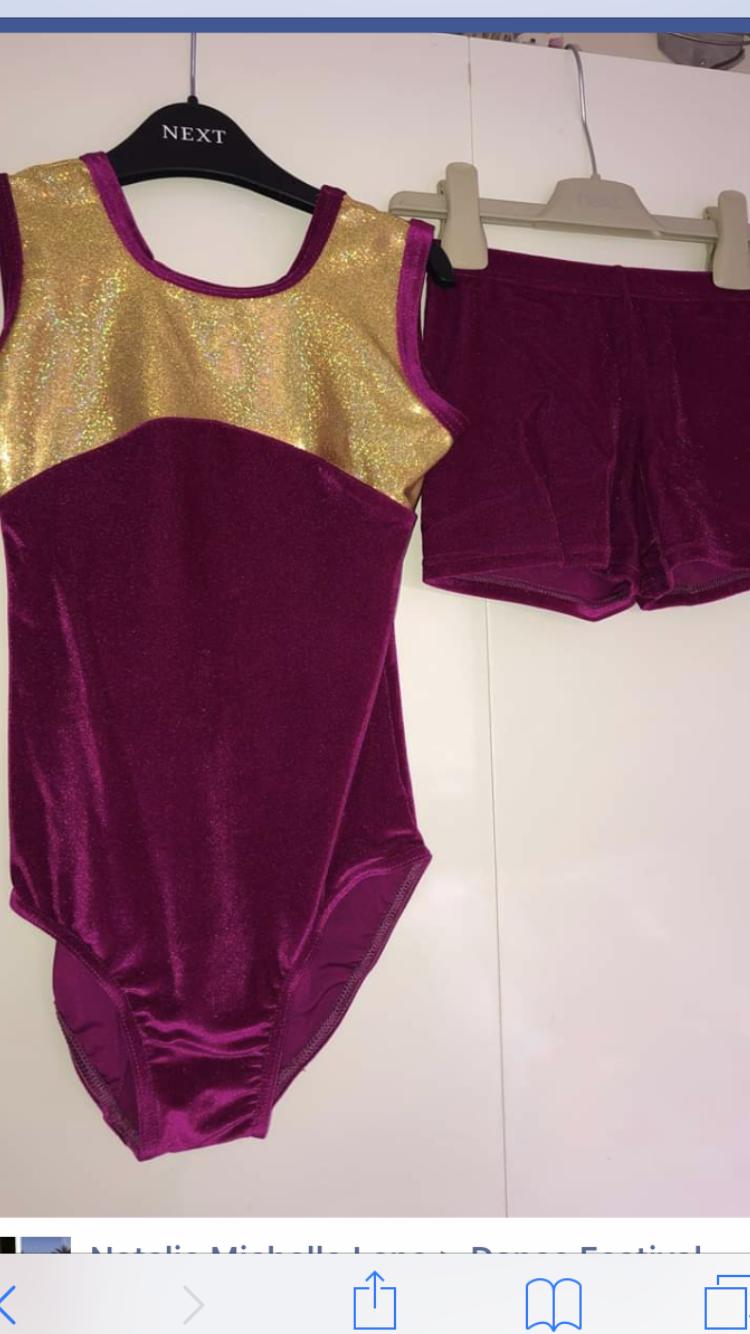 Pink Velour leotard and short set