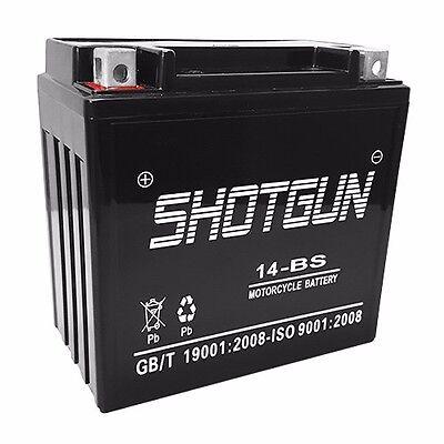 SHOTGUN 1 YEAR WARRANTY Motorcycle Battery fits/replaces Kawasaki KMX14-BS