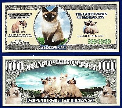 Collectible-Fake-Money-Free Ship-F1 1-CAT RESCUE Dollar Bill Novelty
