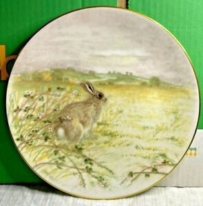 Royal Doulton-Fine Bone China Plate-Country Life-Bobtailed Rabbit-Jane Neville