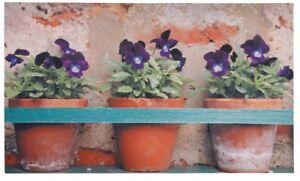 Paillasson-Caoutchouc-pots-de-fleurs-style-maison-campagne-caoutchoute-jardin