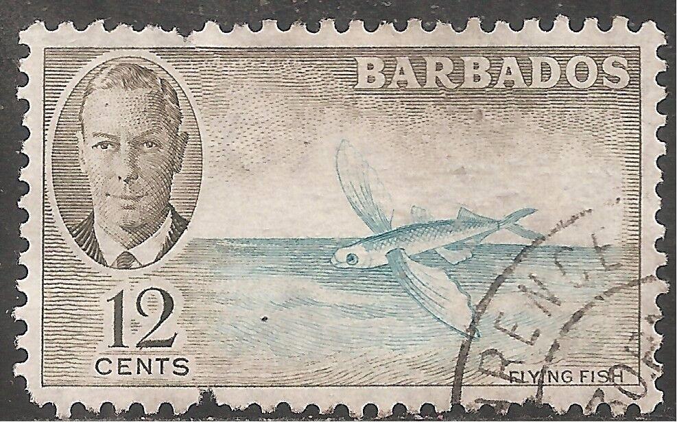 Barbados Stamp - Scott #222/A23 12c Olive & Aqua Canc/LH 1950