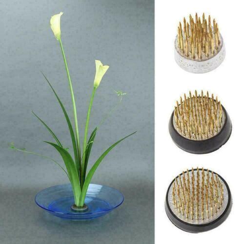 Round Ikebana Kenzan Flower Frog W//Rubber Gasket Art Arranging Tools Set Fi J1J5