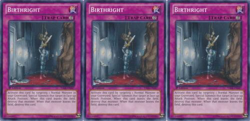 3x Yugioh YSKR-EN047 Birthright Common Card
