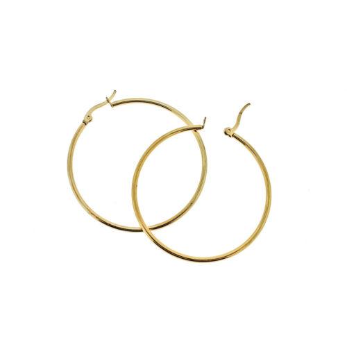 2 Hoop Earrings Z1113 1 Pair Lever Back Gold Tone Stainless Steel