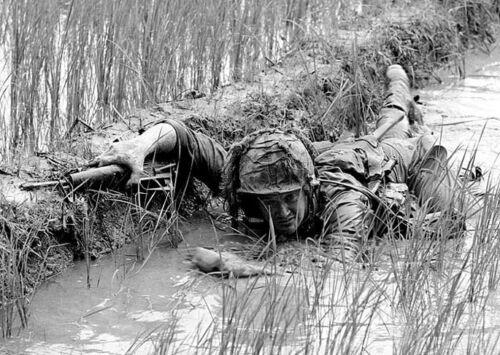 B&W Vietnam War Photo US Soldier 1st Cavalry in Rice Paddy 1966  / 1556