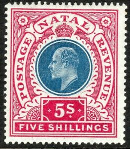 South-Africa-Natal-1902-blue-rose-5-crown-CC-mint-SG140