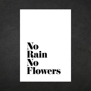 Wall Art Decor Print A5 A4 A3 No Rain No Flowers Typography Designer Poster