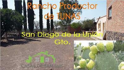 RANCHO PRODUCTOR DE TUNAS SAN DIEGO DE LA UNION