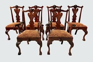 SOUTHERN-ANTIQUE-SET-OF-SIX-CHIPPENDALE-MAHOGANY-BALL-amp-CLAW-DINING-CHAIRS